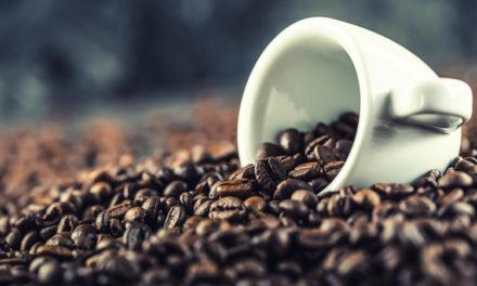 México, onceavo productor de café en el mundo