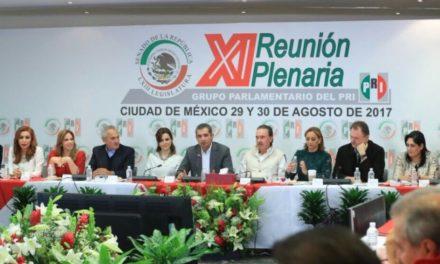 Cortina de humo, declaraciones de Anaya para ocultar origen de patrimonio: Ochoa