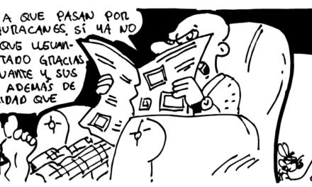 """""""Por si las moscas"""""""
