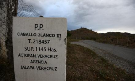 Formaliza Lavida petición de realizar consulta pública sobre minera Caballo Blanco