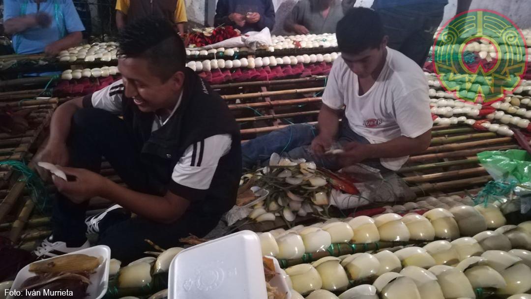 GALERÍA: Inician los preparativos de las fiestas patronales de San Jerónimo en Coatepec