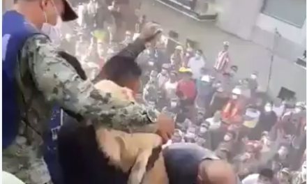 Comparten video de momento en que un perro es rescatado de entre los escombros en CDMX