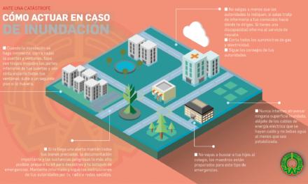 INFOGRAFÍA: Cómo actuar en caso de inundación