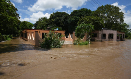 En descenso los niveles de ríos del norte al centro; en lento ascenso los del sur de la entidad: Conagua
