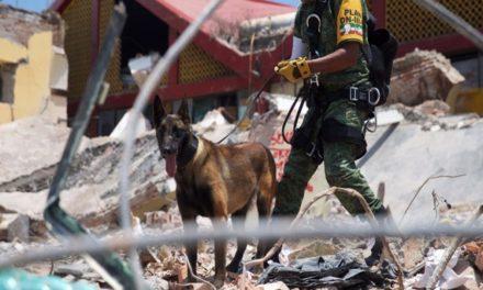Gobierno federal reporta 90 personas fallecidas por sismo del jueves