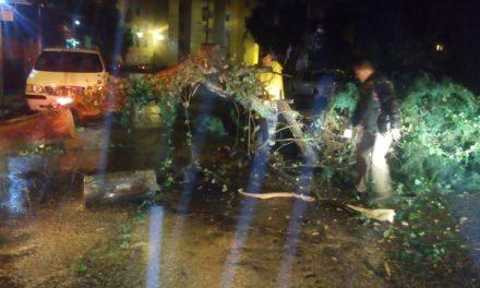 Solicitan Declaratoria de Desastre para 210 municipios por daños provocados por Katia y sismo