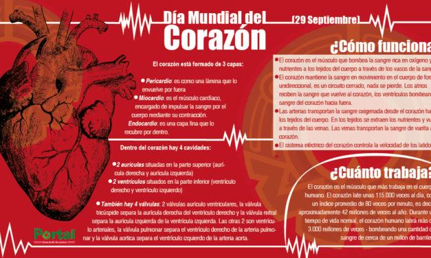 29 de septiembre, Día Mundial del Corazón