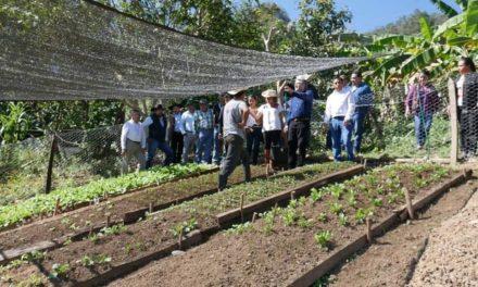 Beneficia SEDESOL con vivienda digna y juegos infantiles a familias de Zacualpan y Zontecomatlán