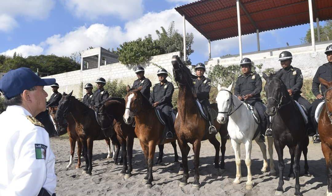 IPAX cuenta con agrupamiento de caballería