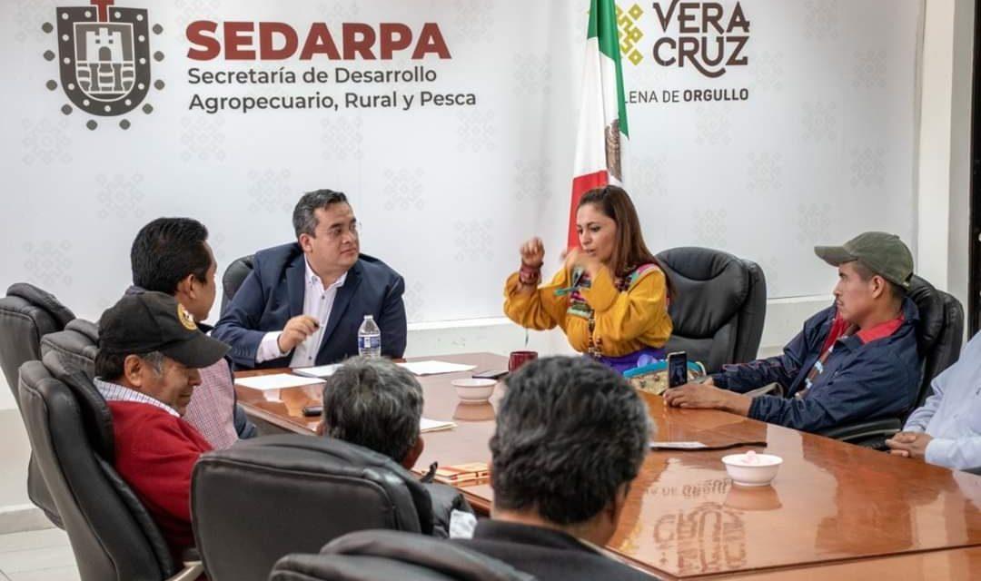 """Veracruz, sede del Certamen Internacional """"Taza de Excelencia"""" en 2020 y 2021"""