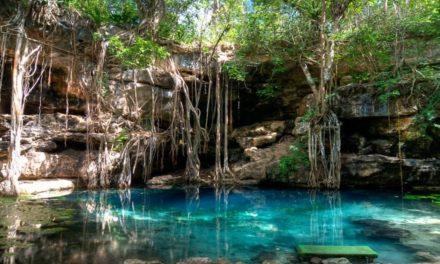 Habilitan y rescatan cenotes sagrados mayas en Yucatán
