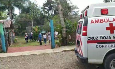 Mujer es atacada por un Jaguar en el interior del Zoológico Bio Zop en Córdoba.