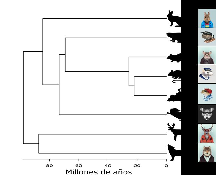 Figura 3: Relaciones filogenéticas (de parentesco) entre especies de mamíferos de las dos islas hipotéticas: especies más cercanas son más parecidas (Filogenia: Axel Arango; Imágenes: Victoria Novak, Berkeley Illustration, Yago Partal).