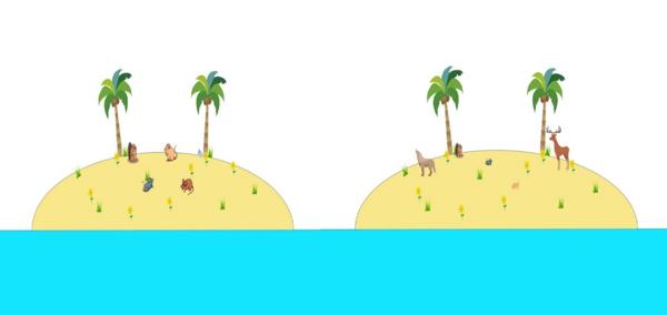 Figura 1: Dos islas hipotéticas con el mismo número de especies pero diferente composición (Axel Arango).