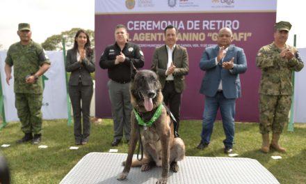 """Con honores, retira Fuerza Civil al agente canino """"Gadafi"""", tras ocho años de servicio"""