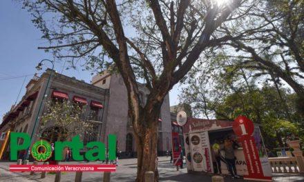 Emiten Alerta Gris por altas temperaturas a consecuencia de surada en Veracruz