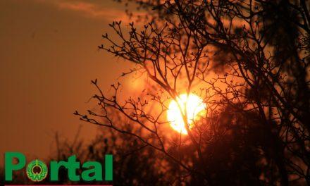 Ambiente cálido mediodía-tarde; fresco noche-madrugada. Bajo potencial de lluvias, aumentando al amanecer. Evento de SURADA.