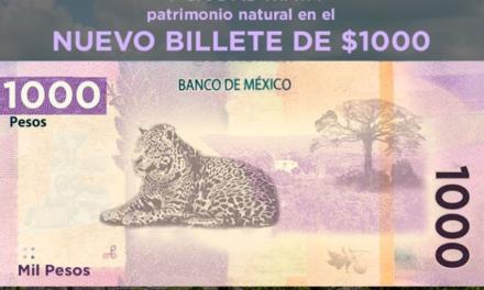 Nuevo billete de mil pesos homenajeará al jaguar y la antigua ciudad maya de Calakmul