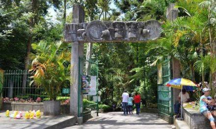 Cerrarán parques en Xalapa, Policía Municipal vigilará que todos permanezcan en sus casas
