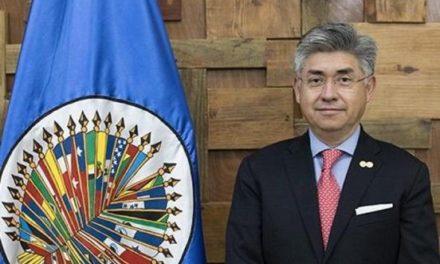 Presidirá mexicano la Comisión Interamericana de DerechosHumanos