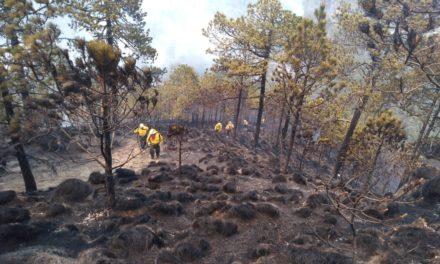 Controlado el 90% del incendio forestal presentado en los límites de los Estados de Veracruz y Puebla.