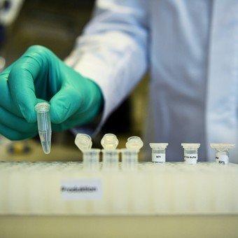 "China anunció que desarrolló ""con éxito"" la vacuna contra el coronavirus"