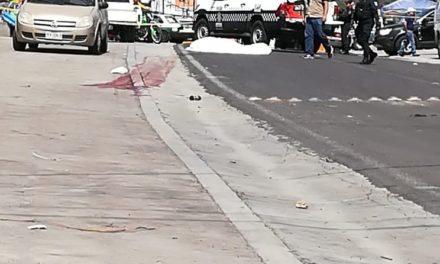 Persona atropellada pierde la vida en la carretera Xalapa – Naolinco, a la altura de Coacoatzintla