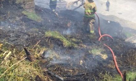 Sofocan incendio en lote baldío del Fraccionamiento Encinos en Xalapa