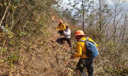 Hasta el momento hay 77 incendios forestales activos en el país: Conafor