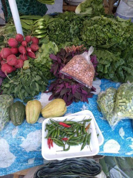 2. Algunas especies comestibles de nuestra biodiversidad (Griselda Benítez)