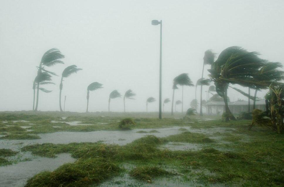 Inició temporada de ciclones; 5 o 6 podrían ingresar a territorio nacional. Se espera presencia de lluvias y algunas tormentas para el fin de semana