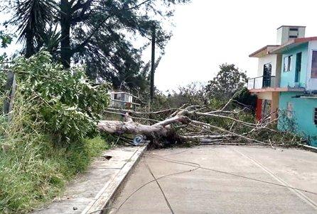 Turbonada en Veracruz afecta 286 viviendas, el fenómeno causó daños en al menos 16 municipios de la entidad.