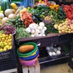 Seguridad alimentaria: Nuestras soluciones están en la naturaleza