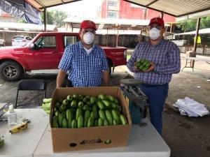 Jornada Consumo Solidario en Xalapa, venta de 20 toneladas de plátano, litchi, vainilla y mango