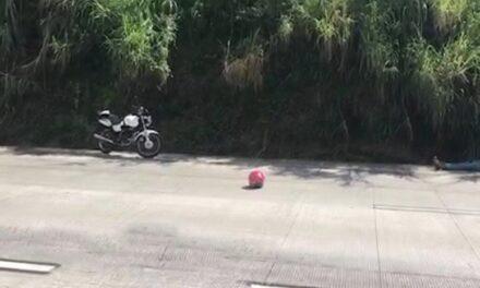 Joven mujer muere en accidente de tránsito en la carretera Xalapa – Coatepec