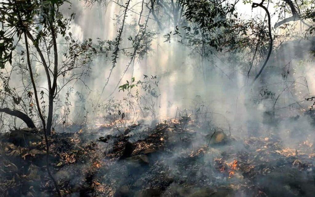 Por hacer TikTok, joven provocó incendio en Tepoztlán