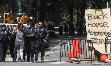 """""""Se encontrarán con una fuerza seria"""": Donald Trump lanza mensaje a manifestantes de Washington"""