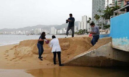 Investigan desfogue de aguas negras en Acapulco tras video viral