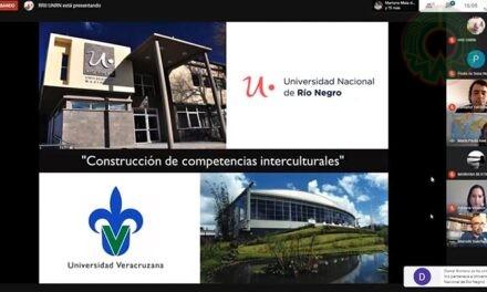 UV y UNRN realizaron seminario sobre internacionalización y movilidad