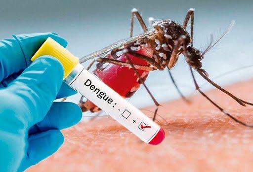 Jalisco desbanca del primer lugar a Veracruz en casos de Dengue