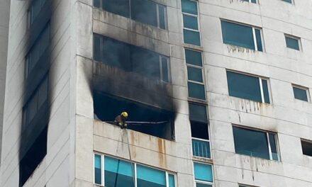 Video:Un perro calcinado en el incendio de torre JV, una pantalla de tv inició el fuego