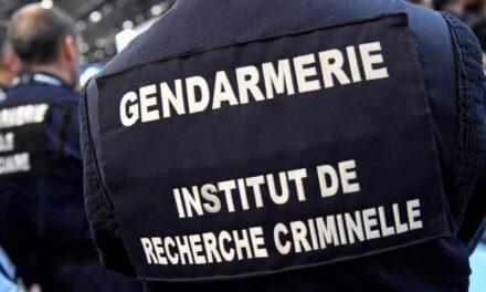Detienen en Francia a uno de los pederastas más buscados en la 'darknet', un padre de familia de 40 años