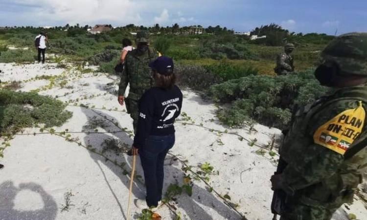 Así cuidan los nidos tortugueros en Yucatán