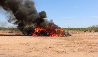 FGR incinera más de siete toneladas de diversos narcóticos