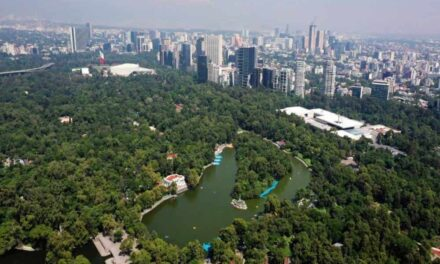 Proyecto de rehabilitación no dañará el Bosque de Chapultepec: Sheinbaum