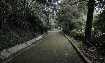 Corredores del parque ecológico Macuiltepec solicitaron a las autoridades municipales la reapertura del área verde.