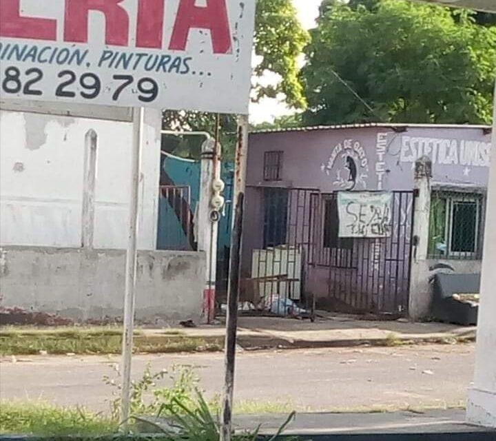 Persona baleada sin vida a la altura del Mercado Malibrán en Veracruz