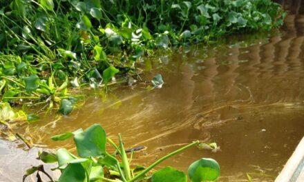 Reportan nuevo derrame de hidrocarburo al Río Coatzacoalcos