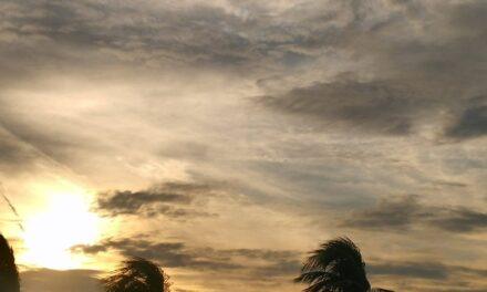 Próximas 24 horas en Veracruz se prevé poco cambio de temperatura, disminución de las lluvias/tormentas, y viento del Norte y Noroeste con rachas.