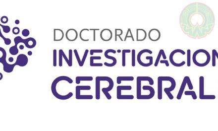 Doctorado en Investigaciones Cerebrales-UV abre su convocatoria